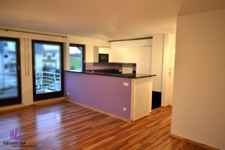 apartment for rent 2 bedrooms 82 m² berchem photo 1