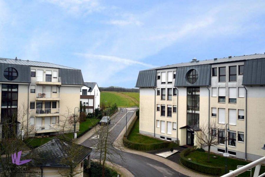 apartment for rent 2 bedrooms 82 m² berchem photo 4