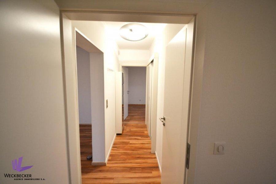apartment for rent 2 bedrooms 82 m² berchem photo 3