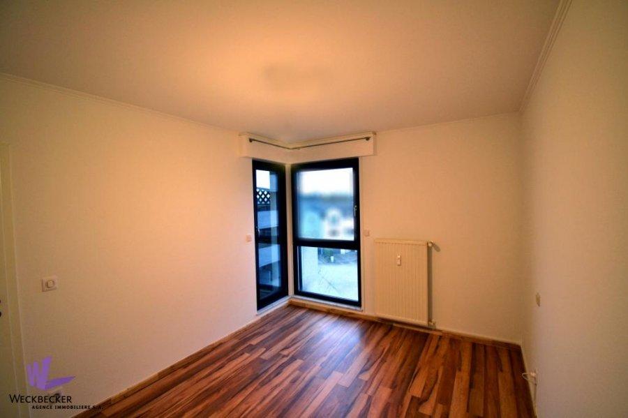 apartment for rent 2 bedrooms 82 m² berchem photo 5