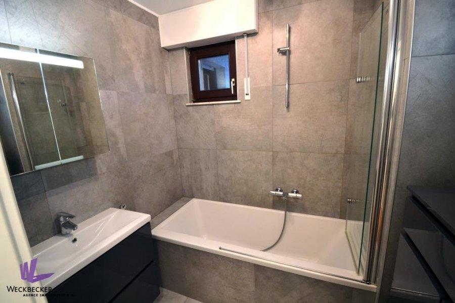 apartment for rent 2 bedrooms 82 m² berchem photo 6
