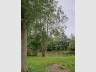 Terrain constructible à vendre à Avesnes-sur-Helpe - Réf. 6550294