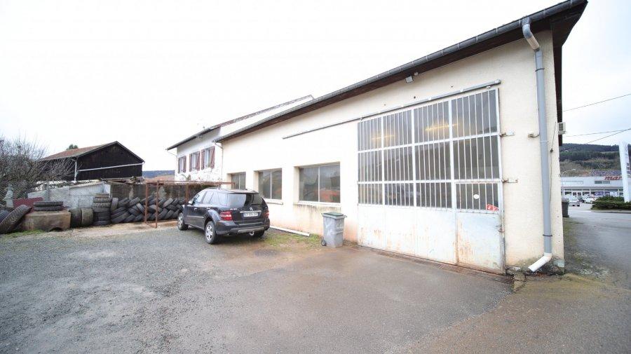 acheter entrepôt 0 pièce 336 m² fraize photo 2