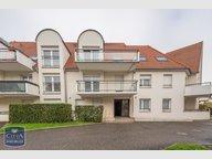 Appartement à vendre F2 à Dettwiller - Réf. 6605094