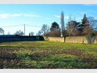 Terrain à vendre à Doué-la-Fontaine - Réf. 5082150