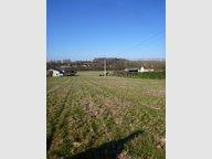 Terrain à vendre à Château-du-Loir - Réf. 5076022