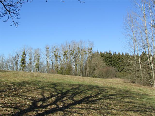 acheter terrain constructible 0 pièce 730 m² messancy photo 7