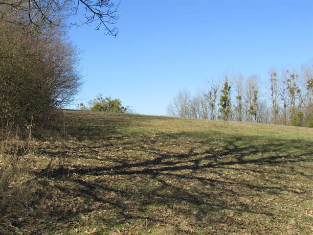 acheter terrain constructible 0 pièce 730 m² messancy photo 6