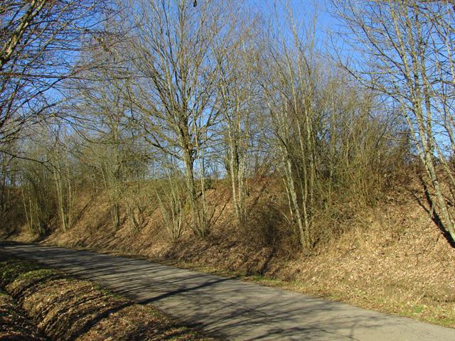 acheter terrain constructible 0 pièce 730 m² messancy photo 4