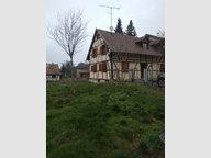 Maison à louer à Zaessingue - Réf. 6191158