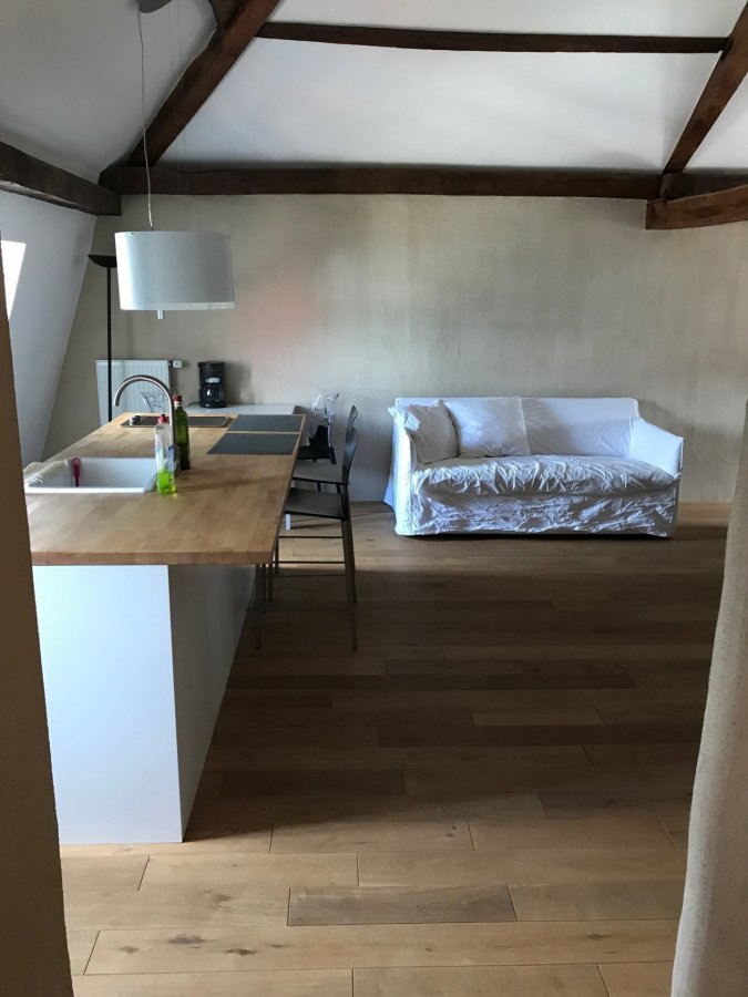apartment mieten 1 schlafzimmer 50 m² roodt-sur-syre foto 5
