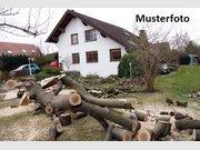 Maison à vendre 5 Pièces à Nideggen - Réf. 6034246