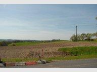Terrain constructible à vendre à Altscheid - Réf. 6660934