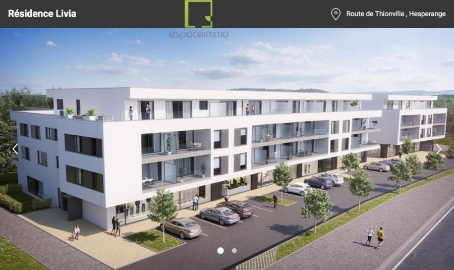 apartment for buy 3 bedrooms 120.42 m² alzingen photo 1