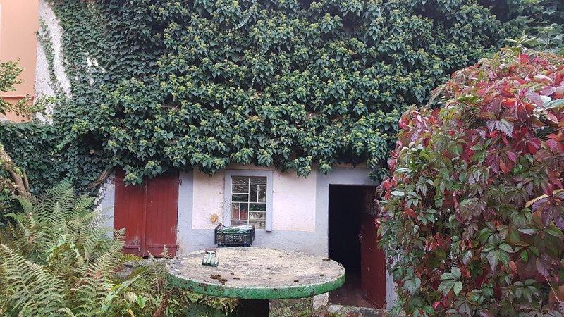 acheter maison 0 pièce 80 m² bruyères photo 2