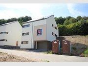 Villa à vendre 4 Chambres à Insenborn (LU) - Réf. 4294998