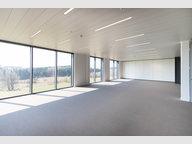 Büro zur Miete in Wemperhardt - Ref. 6770518