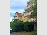 Appartement à louer F2 à Marmoutier - Réf. 6053734