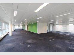 Bureau à louer à Luxembourg-Centre ville - Réf. 5543286
