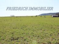Terrain constructible à vendre à Toul - Réf. 6645366
