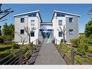 Büro zur Miete 8 Zimmer in Zemmer - Ref. 6428534