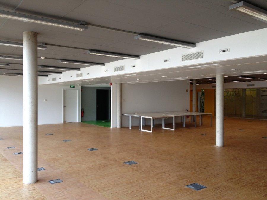 louer bureau 0 chambre 267 m² leudelange photo 2
