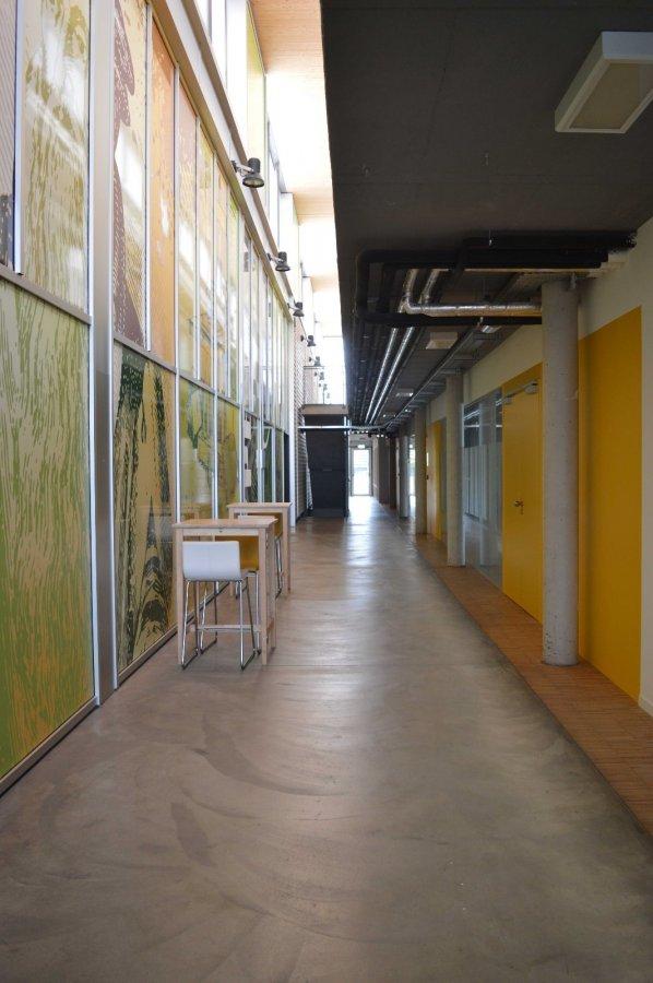 louer bureau 0 chambre 267 m² leudelange photo 3