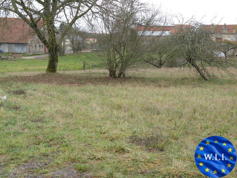 acheter terrain constructible 0 pièce 1309 m² sarrebourg photo 4