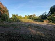 Terrain constructible à vendre à Bazailles - Réf. 6031766