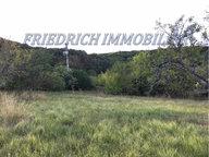 Terrain constructible à vendre à Buxières-sous-les-Côtes - Réf. 6512022