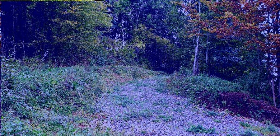 acheter terrain constructible 0 pièce 0 m² rédange photo 2