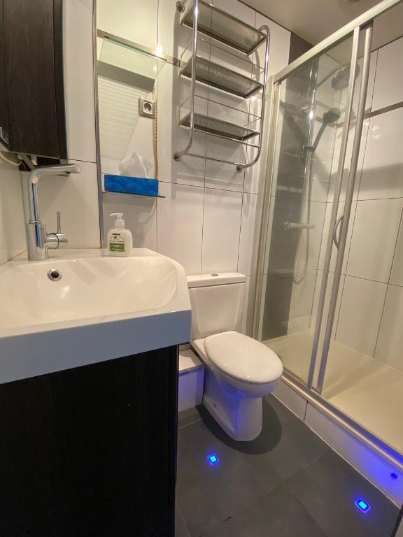 louer appartement 2 pièces 30.93 m² nancy photo 5