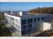 Bureau à louer à Windhof - Réf. 6131366