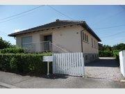 Maison à louer F4 à Pfaffenhoffen - Réf. 6602662