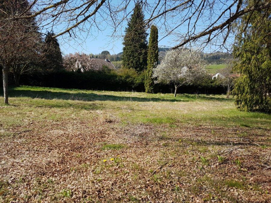 acheter terrain constructible 0 pièce 2000 m² ban-de-laveline photo 3