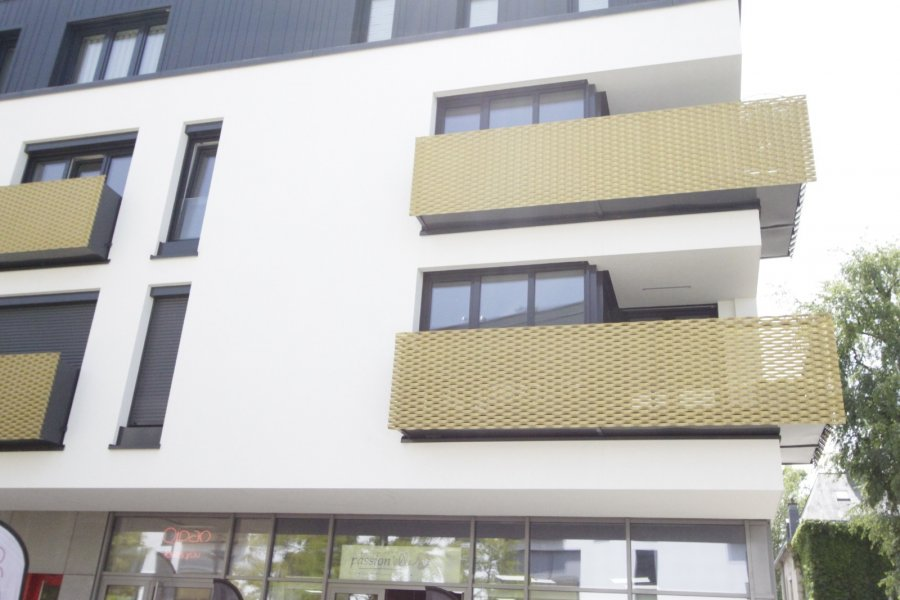 apartment for rent 3 bedrooms 100 m² dudelange photo 2