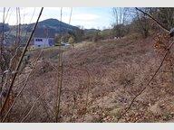 Terrain à Lapoutroie , Haut-Rhin - Réf. 5203926
