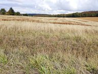 Terrain constructible à vendre à Amnéville - Réf. 6962390