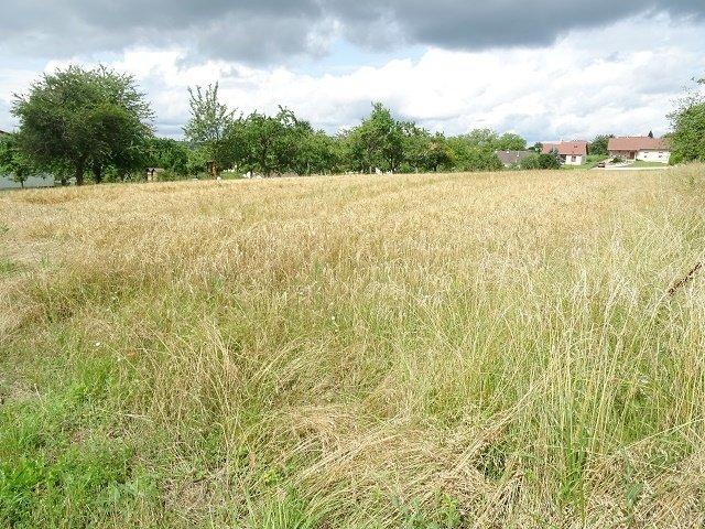 Terrain constructible à vendre à bizing
