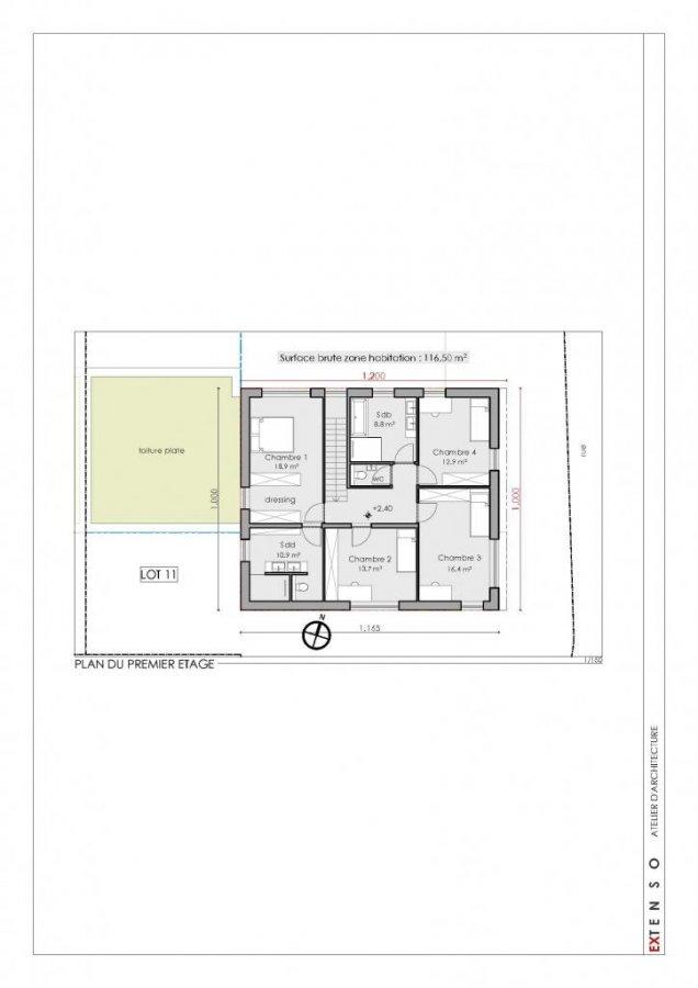 reihenhaus kaufen 4 schlafzimmer 273 m² steinfort foto 7