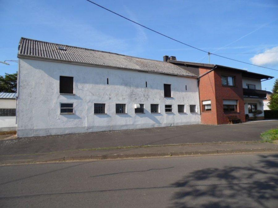 haus kaufen 6 zimmer 172 m² heckhuscheid foto 3