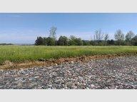 Terrain constructible à vendre à Les Étangs - Réf. 6737382