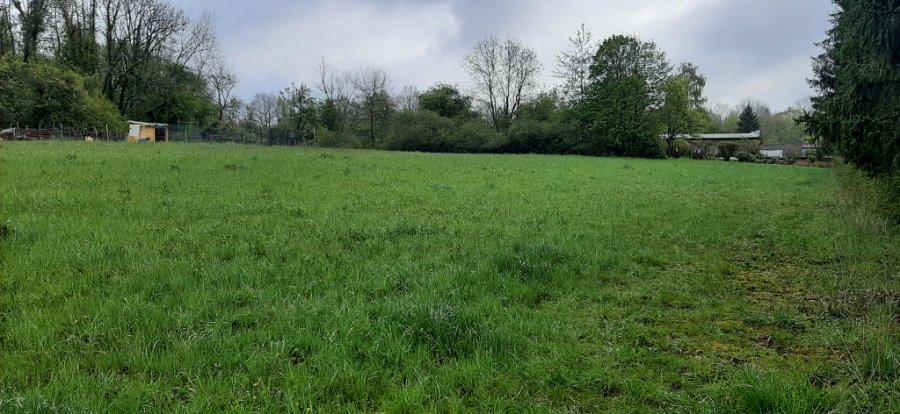 acheter terrain constructible 0 pièce 13173 m² longuyon photo 2