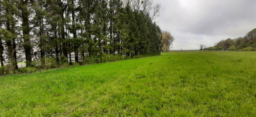 acheter terrain constructible 0 pièce 13173 m² longuyon photo 1