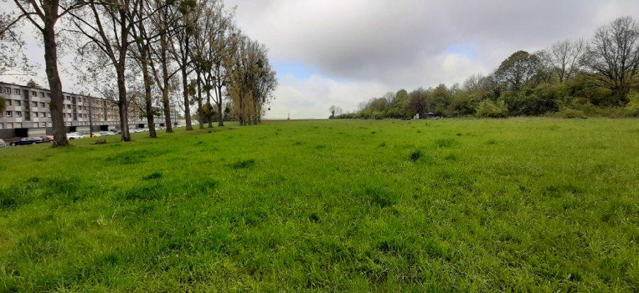 acheter terrain constructible 0 pièce 13173 m² longuyon photo 3