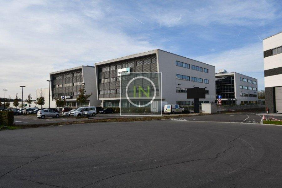 büro mieten 0 schlafzimmer 462 m² contern foto 4