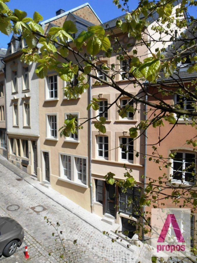 louer maison 5 chambres 350 m² luxembourg photo 1