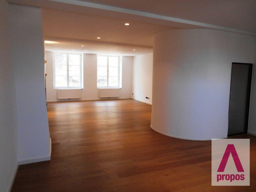louer maison 5 chambres 350 m² luxembourg photo 7