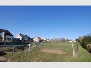 Grundstück zum Kauf in Ernzen - Ref. 5209607