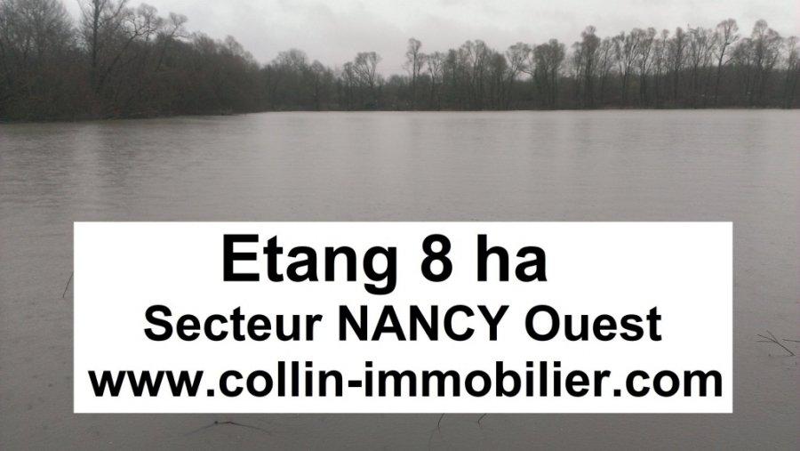 acheter terrain constructible 0 pièce 80000 m² nancy photo 1